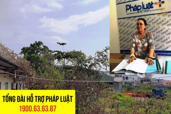 Bà Trần Thị Hương và khu đất dự án trung tâm thương mại thái dương bị đắp chiếu hơn chục năm qua